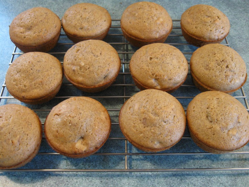 Gluten-Free Whole Grain Muffins Recipe — Dishmaps